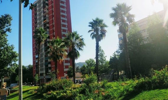 Rethinking Welfare: Understanding Basic Income in Barcelona