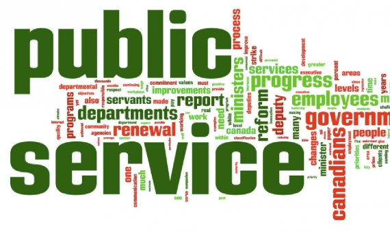 Innovation Culture in the Public Sector: A learning Experience